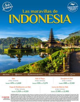 Las maravillas de Indonesia