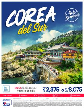 Corea del Sur - Solo Servicios