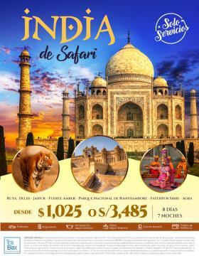 India de Safari - Trabax