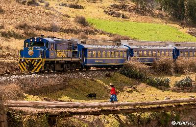 Everything you need to know about PERU RAIL