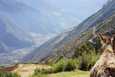 All about: Sacred Valley